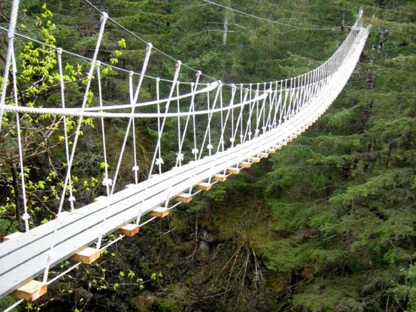 Jembatan Tajuk di Bukit Bangkirai, Kalimantan Timur (sumber)