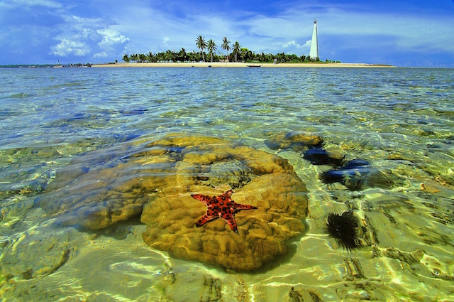 Pulau Beras Basah, Bontang, Kalimantan Timur (sumber)