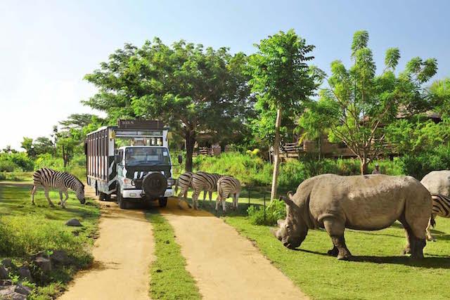 Bali Safari dan Marine Park (sumber)