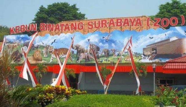 Kebun Binatang Surabaya, Jawa Tengah (sumber)
