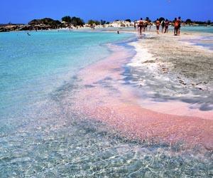 Pink Beach, Lombok (sumber)