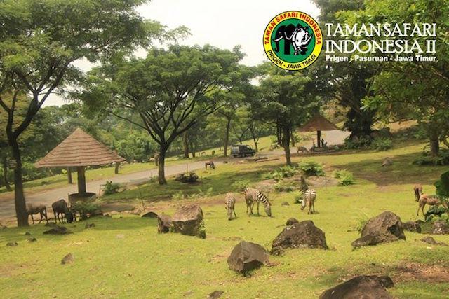 Taman Safari Indonesia 2, Jawa Tengah (sumber)